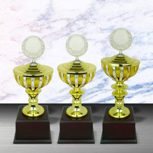 Silver Trophies EXWS6076 – Exclusive White Silver Trophy
