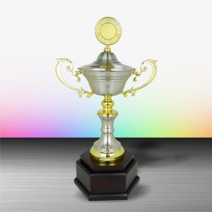 Silver Trophies EXWS6077 – Exclusive White Silver Trophy