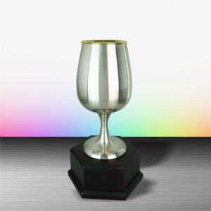Silver Trophies EXWS6080 – Exclusive White Silver Trophy
