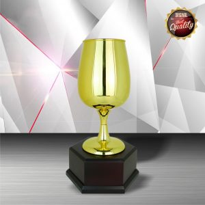 Silver Trophies EXWS6081 – Exclusive White Silver Trophy