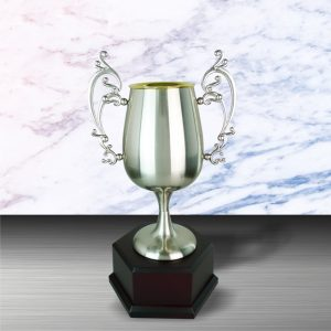 Silver Trophies EXWS6083 – Exclusive White Silver Trophy