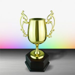 Silver Trophies EXWS6084 – Exclusive White Silver Trophy