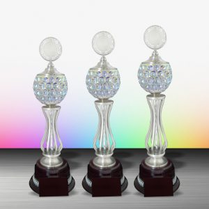 Silver Trophies EXWS6087 – Exclusive White Silver Trophy
