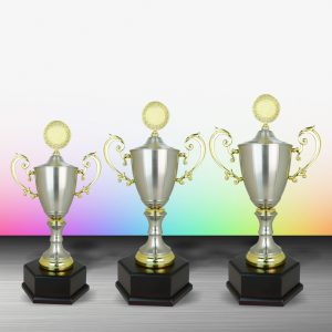 Silver Trophies EXWS6088 – Exclusive White Silver Trophy