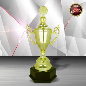 Silver Trophies EXWS6090 – Exclusive White Silver Trophy
