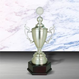 Silver Trophies EXWS6091 – Exclusive White Silver Trophy
