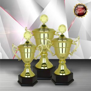 Silver Trophies EXWS6098 – Exclusive White Silver Trophy