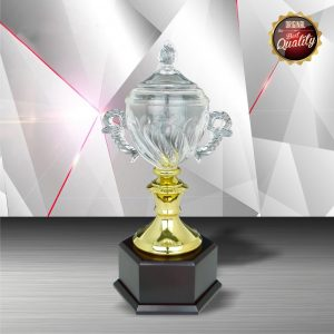 Silver Trophies EXWS6101 – Exclusive White Silver Trophy With Crystal