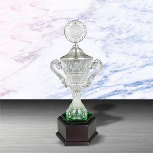 Silver Trophies EXWS6102 – Exclusive White Silver Trophy With Crystal