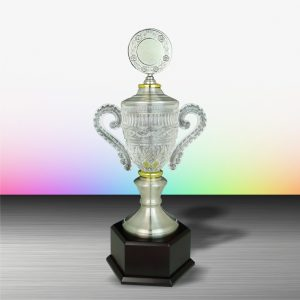 Silver Trophies EXWS6103 – Exclusive White Silver Trophy With Crystal
