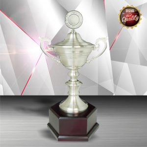 Silver Trophies EXWS6105 – Exclusive White Silver Trophy