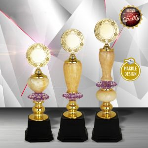 Silver Trophies EXWS6107 – Exclusive White Silver Trophy