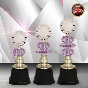 Silver Trophies EXWS6110 – Exclusive White Silver Trophy
