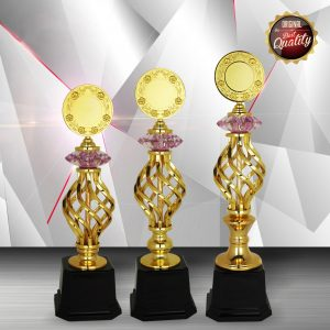 Silver Trophies EXWS6111 – Exclusive White Silver Trophy
