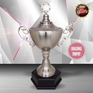Silver Trophies EXWS6118 – Exclusive White Silver Trophy (Challenge Trophy)