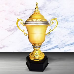 Silver Trophies EXWS6120 – Exclusive White Silver Trophy (Challenge Trophy)