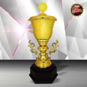 Silver Trophies EXWS6121 – Exclusive White Silver Trophy