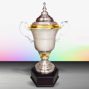 Silver Trophies EXWS6122 – Exclusive White Silver Trophy (Challenge Trophy)