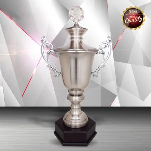 Silver Trophies EXWS6123 – Exclusive White Silver Trophy