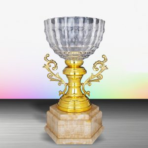 Silver Trophies EXWS6125 – Exclusive White Silver Trophy With Crystal Bowl