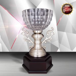Silver Trophies EXWS6126 – Exclusive White Silver Trophy With Crystal Bowl