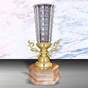 Silver Trophies EXWS6127 – Exclusive White Silver Trophy With Crystal Vase