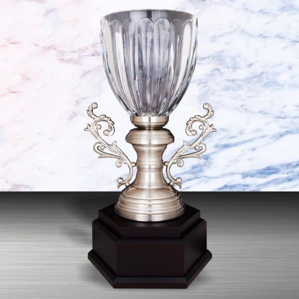 Silver Trophies EXWS6130 – Exclusive White Silver Trophy With Crystal Vase