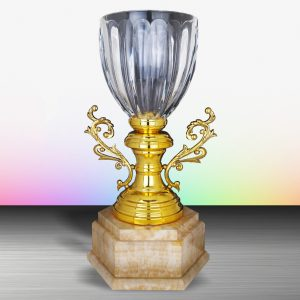 Silver Trophies EXWS6131 – Exclusive White Silver Trophy With Crystal Vase