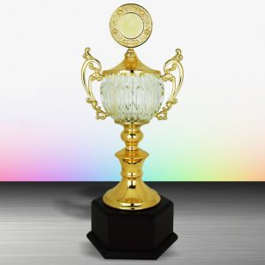 Silver Trophies EXWS6134 – Exclusive White Silver Trophy With Crystal