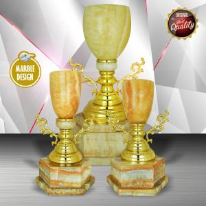 Silver Trophies EXWS6138 – Exclusive White Silver Trophy