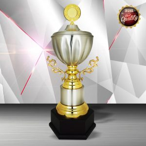 Silver Trophies EXWS6141 – Exclusive White Silver Trophy