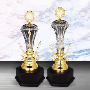 Silver Trophies EXWS6142 – Exclusive White Silver Trophy With Crystal