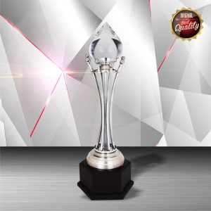 Silver Trophies EXWS6144 – Exclusive White Silver Trophy With Crystal