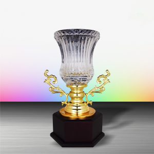 Silver Trophies EXWS6146 – Exclusive White Silver Trophy With Crystal Vase