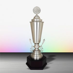 Silver Trophies EXWS6149 – Exclusive White Silver Trophy