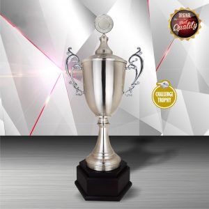 Silver Trophies EXWS6150 – Exclusive White Silver Trophy