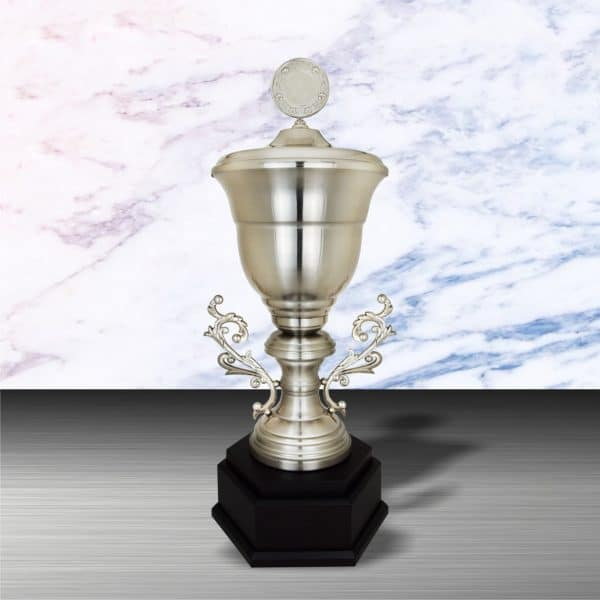 Silver Trophies EXWS6151 – Exclusive White Silver Trophy