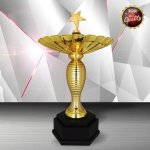 Silver Trophies EXWS6185 – Exclusive White Silver Trophy (Star)