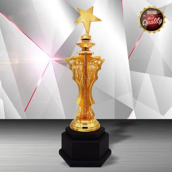 Silver Trophies EXWS6189 – Exclusive White Silver Trophy (Star)