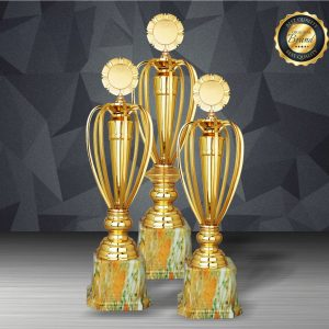 Silver Trophies EXWS6192 – Exclusive White Silver Trophy