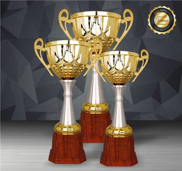 Silver Trophies EXWS6195 – Exclusive White Silver Trophy