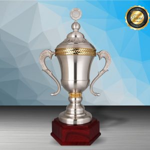 Silver Trophies EXWS6199 – Exclusive White Silver Trophy