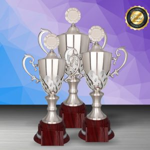 Silver Trophies EXWS6200 – Exclusive White Silver Trophy
