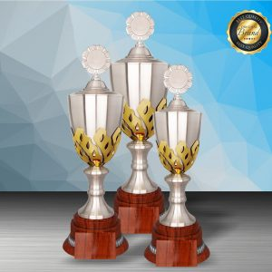 Silver Trophies EXWS6202 – Exclusive White Silver Trophy