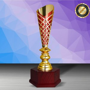 Silver Trophies EXWS6206 – Exclusive White Silver Trophy