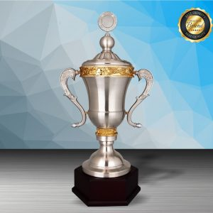 Silver Trophies EXWS6208 – Exclusive White Silver Trophy