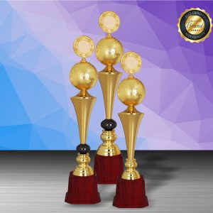 Silver Trophies EXWS6209 – Exclusive White Silver Trophy