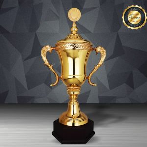 Silver Trophies EXWS6210 – Exclusive White Silver Trophy