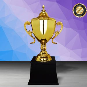 Silver Trophies EXWS6212 – Exclusive White Silver Trophy