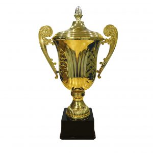 Cup Trophies ICBAW984 – ITALIAN CUP